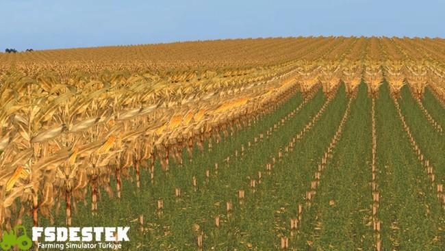Photo of FS17 – Euro Çiftlik Haritası V1