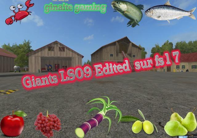 Photo of FS17 – Farming Simulator 2009 Haritası Final