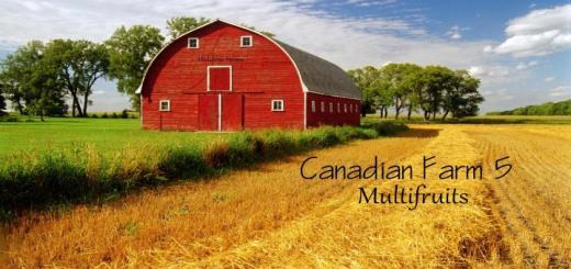 Photo of FS19 – Kanadalı Çiftlik Haritası V5.0