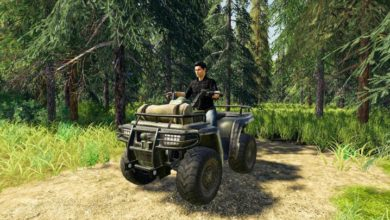 Photo of FS19 – Lizard ATV